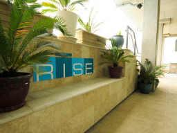 Rise Lofts